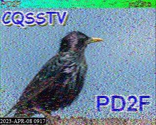 History #18 de PD3F