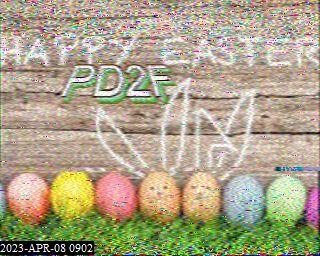 History #19 de PD3F